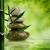 Natural zen backgrounds with bamboo leaves and pebble for your design